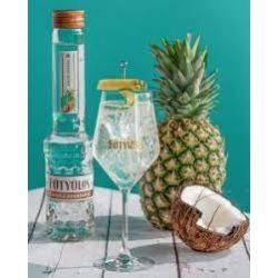 Fütyülős kókusz-ananász 0,5L